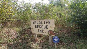 The entrance of Austin Wildlife Rescue
